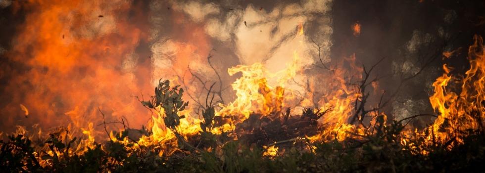 Incendies de forêts à cause de la foudre